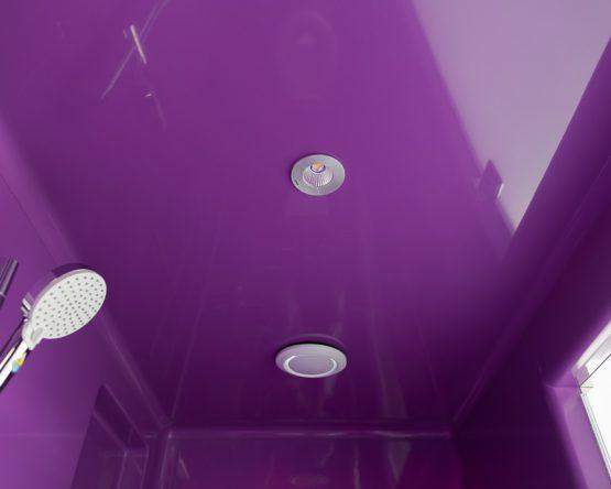 Luminaire plafond pour sanitaire
