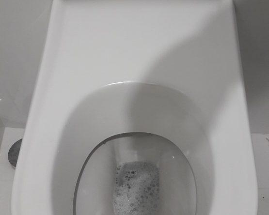 WC automatisé